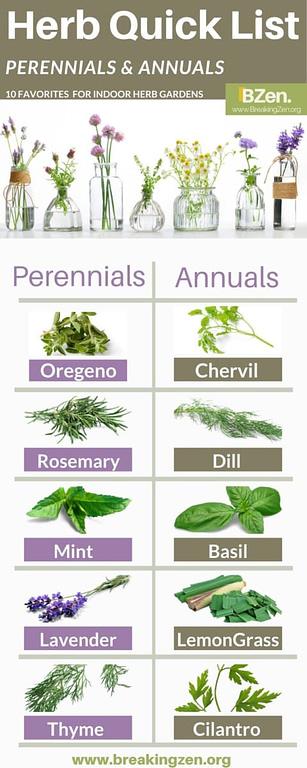 Indoor Herb Garden. 10 Best Herbs