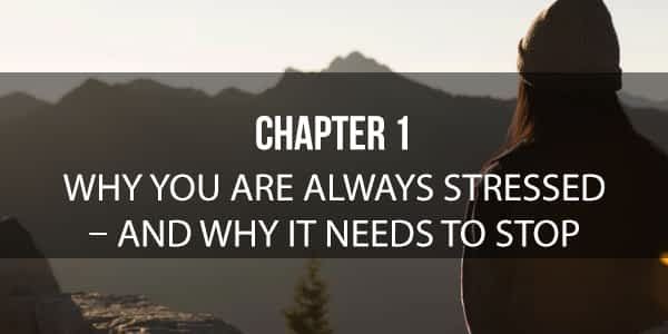 Why are you always stressed chapter 1. Eliminate fear-based thinking